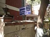 Dr.S. Bala Parameshwar Rao Clinic - Green Lands